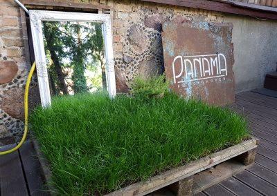 Panama food garden interjero akcentai